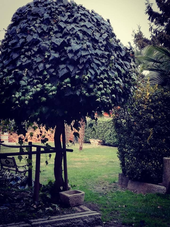 giardino interno cascina